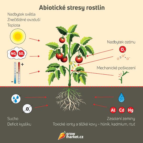 Abiotické stresy rostliny (horko, sucho, znečištěné ovzduší a další)