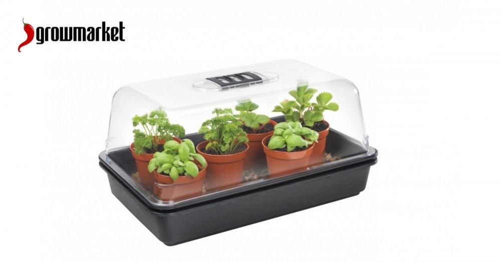 Skleníky a plastové skleníčky na bezpečné množení a pěstování rostlin
