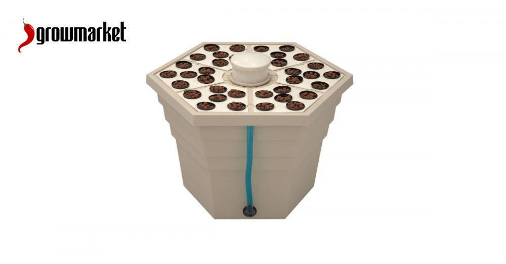 Hydroponické a aeroponické pěstební systémy
