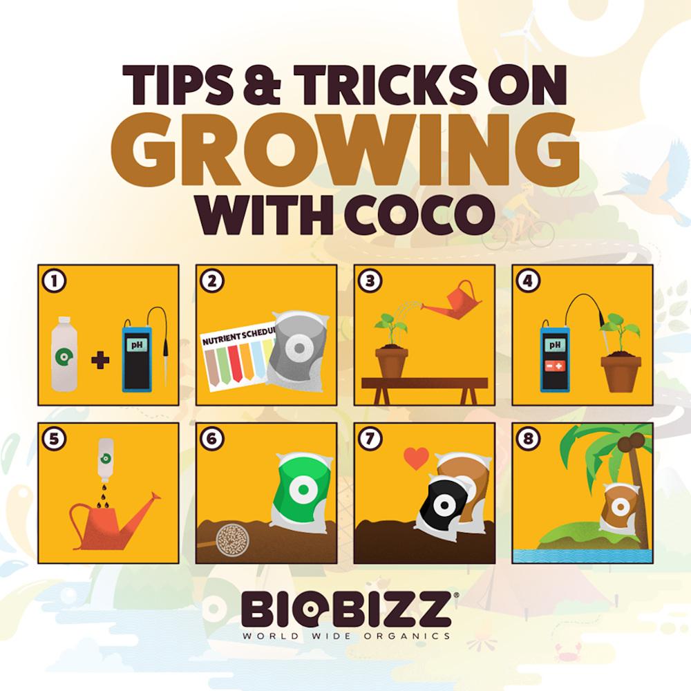 BioBizz, tipy pro pěstování v kokosu